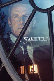 Wakefield (2017)