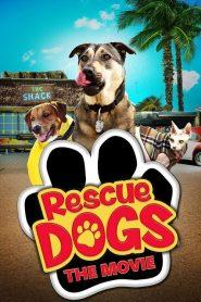 Rescue Dogs (2016)