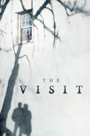 The Visit (2015) Online Subtitrat in Romana HD Gratis
