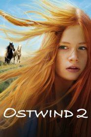 Windstorm 2 (2015)