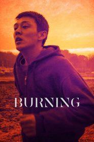 Burning (2018) Online Subtitrat in Romana HD Gratis