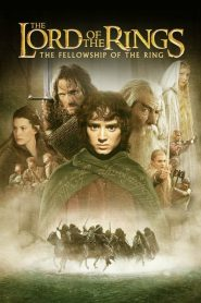 The Lord of the Rings: The Fellowship of the Ring (2001) Online Subtitrat in Romana HD Gratis