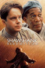 The Shawshank Redemption (1994) Online Subtitrat in Romana HD Gratis