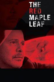 The Red Maple Leaf (2017) Online Subtitrat in Romana HD Gratis
