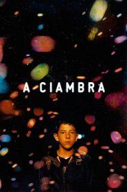 The Ciambra (2017)