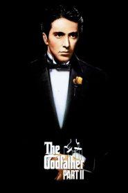 The Godfather: Part II (1974) Online Subtitrat in Romana HD Gratis