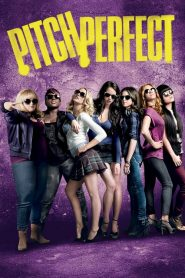 Pitch Perfect (2012) Online Subtitrat in Romana HD Gratis