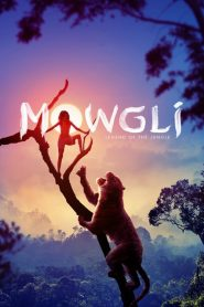 Mowgli: Legend of the Jungle (2018) Online Subtitrat in Romana HD Gratis