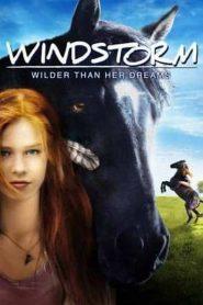 Windstorm (2013)