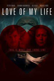 Love of My Life (2013)