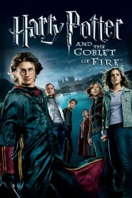 Harry Potter and the Goblet of Fire (2005) Online Subtitrat in Romana HD Gratis