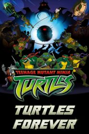 Turtles Forever (2009)