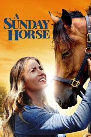 A Sunday Horse (2016)