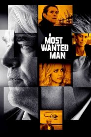 A Most Wanted Man (2014) Online Subtitrat in Romana HD Gratis