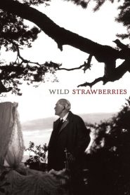 Wild Strawberries (1957)