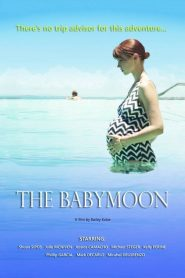 The Babymoon (2017) Online Subtitrat in Romana HD Gratis