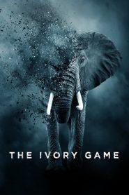 The Ivory Game (2016) Online Subtitrat in Romana HD Gratis