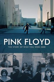 Pink Floyd: The Story of Wish You Were Here (2012)