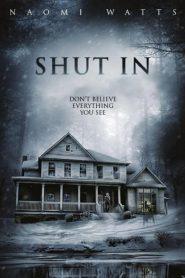 Shut In (2016) Online Subtitrat in Romana HD Gratis