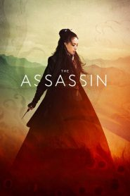 The Assassin (2015)