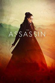 The Assassin (2015) Online Subtitrat in Romana HD Gratis