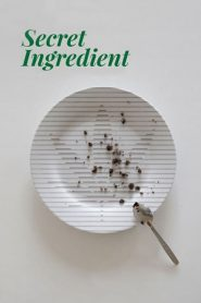 Secret Ingredient (2017)