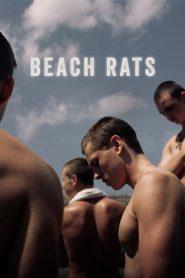 Beach Rats (2017) Online Subtitrat in Romana HD Gratis