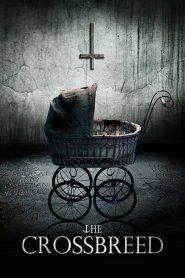 The Crossbreed (2018) Online Subtitrat in Romana HD Gratis