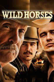 Wild Horses (2015) Online Subtitrat in Romana HD Gratis