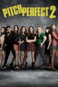 Pitch Perfect 2 (2015) Online Subtitrat in Romana HD Gratis