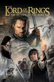 The Lord of the Rings: The Return of the King (2003) Online Subtitrat in Romana HD Gratis