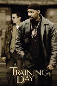 Training Day (2001) Online Subtitrat in Romana HD Gratis