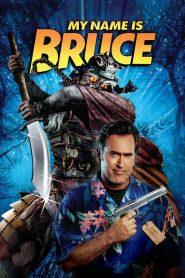 My Name Is Bruce (2007) Online Subtitrat in Romana HD Gratis