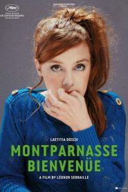Montparnasse Bienvenüe (2017)