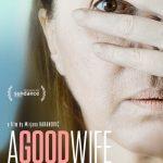 A Good Wife (2017)
