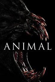 Animal (2014) Online Subtitrat in Romana HD Gratis