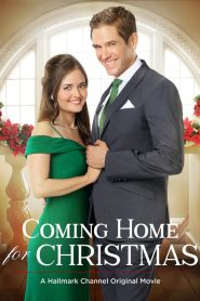 Coming Home for Christmas (2017) Online Subtitrat in Romana HD Gratis