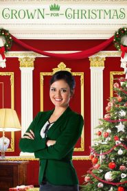 Crown for Christmas (2015) Online Subtitrat in Romana HD Gratis