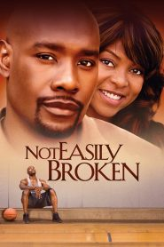 Not Easily Broken (2009) Online Subtitrat in Romana HD Gratis