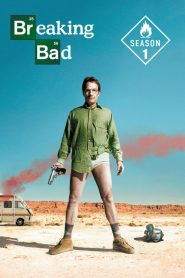 Breaking Bad Sezonul 1 Online Subtitrat in Romana HD Gratis