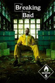 Breaking Bad Sezonul 5 Online Subtitrat in Romana HD Gratis