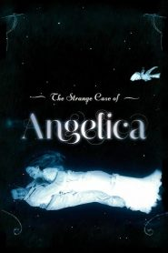 The Strange Case of Angelica (2010) Online Subtitrat in Romana HD Gratis