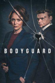 Bodyguard Sezonul 1 Online Subtitrat in Romana HD Gratis