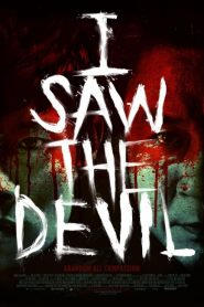 I Saw the Devil (2010) Online Subtitrat in Romana HD Gratis