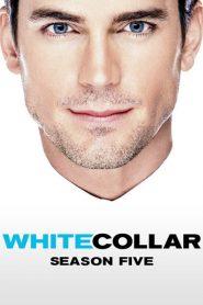 White Collar Sezonul 5 Online Subtitrat in Romana HD Gratis