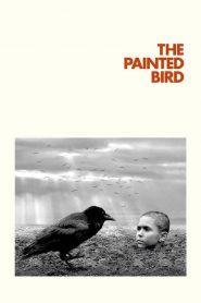The Painted Bird (2019) Online Subtitrat in Romana HD Gratis