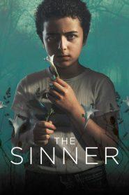 The Sinner Sezonul 2 Online Subtitrat in Romana HD Gratis
