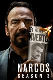 Narcos Sezonul 3 Online Subtitrat in Romana HD Gratis