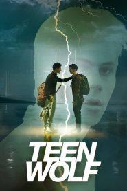 Teen Wolf Sezonul 6