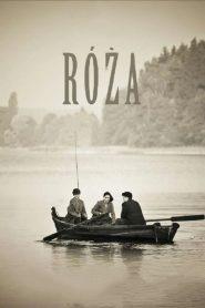 Rose (2012)